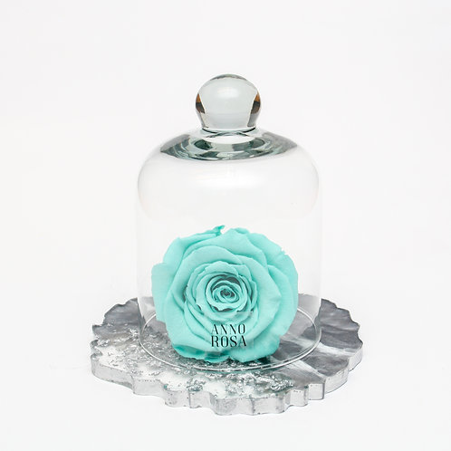 RESIN BELLE SINGLE INFINITY ROSE - AQUA