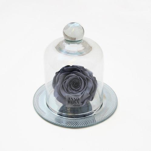 Grey Eternal Rose