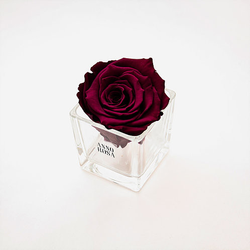 year long roses, roses, forever roses, roses, infinity roses, forever roses, home decor, home decor ideas, home decor ideas, ideas for home decor, summer home decor, home decor, home decor ideas, ideas for home decor, home decor, decor ideas, forever roses, brighten up your home this summer , preparing your home for summer,