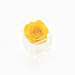 year long rose, infinity rose, forever rose, yellow rose, roses, infinty roses, roses that last a year, yellow rose, gift ideas, gift idea, forever, home decor ideas, first home, vibrant home decor, yellow rose