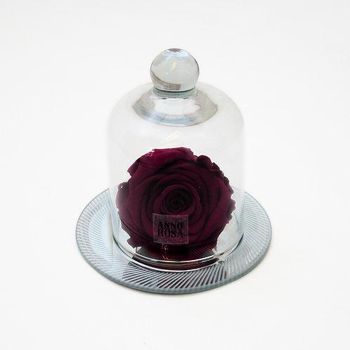 Wine Eternal Rose