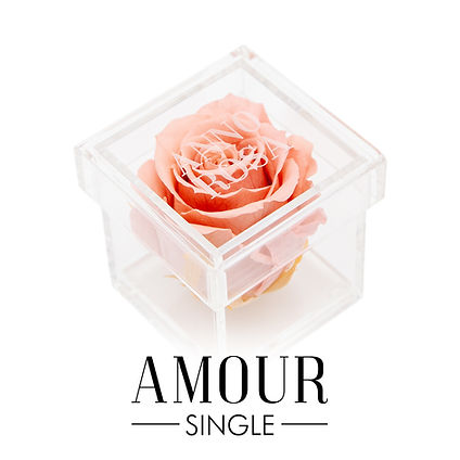 SINGLES AMOUR BUTTON.jpg