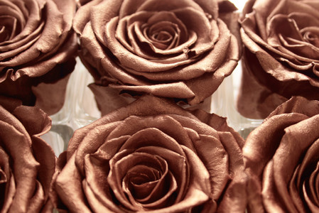 rose gold, rose gold roses, rose gold decor, preserved roses, infinity roses, forever rose, year long rose, forever rose, infinity rose, home decor, home decor ideas, infinity rose ideas