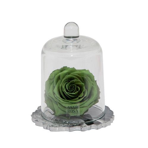 DELUXE SAGE GREEN RESIN BELLE SINGLE INFINITY ROSE