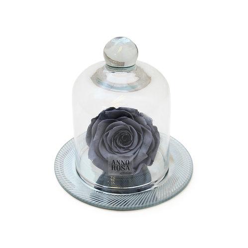GEOMETRIC BELLE SINGLE INFINITY ROSE - GREY