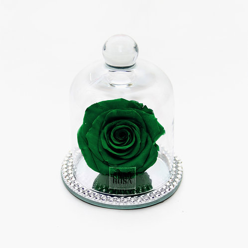 Green Preserved Infinity Rose that lasts a year
