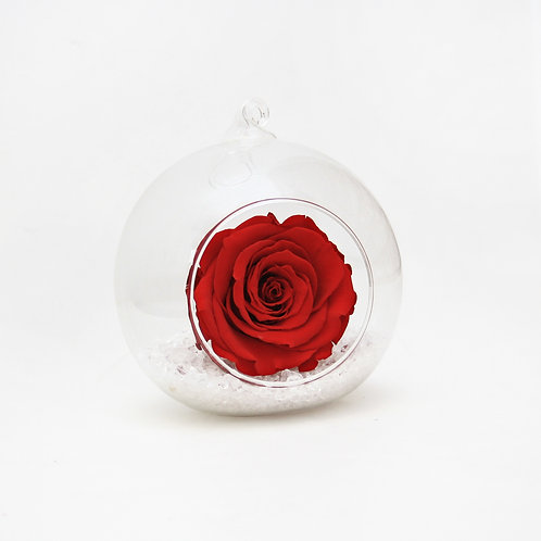 Red Infinity Rose in Bauble