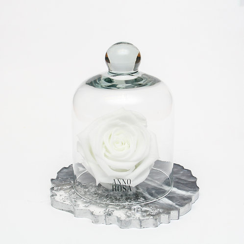 RESIN BELLE SINGLE INFINITY ROSE - WHITE