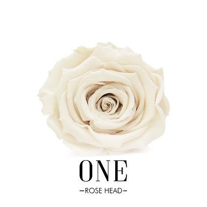 ONE ROSE HEAD.jpg