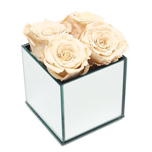 INFINITY ROSE BOX - CHAMPAGNE
