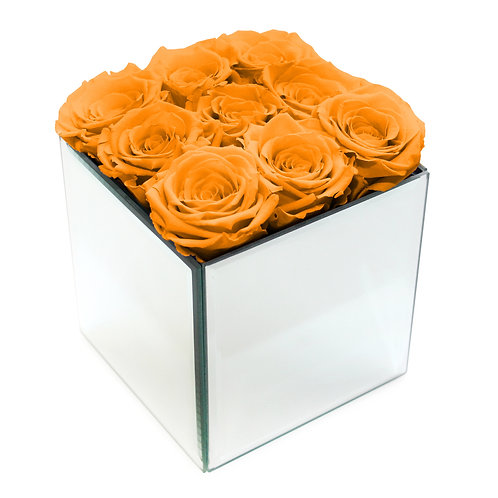 INFINITY ROSE BOX - ORANGE