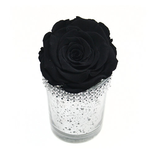 Black Forever Rose that lasts a year