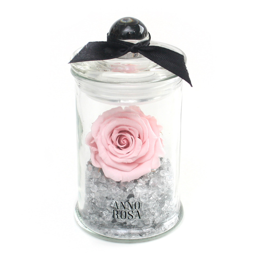 Preserved Mini Eternity Rose