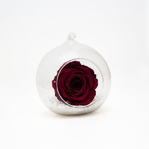Wine Infinity Rose in Bauble