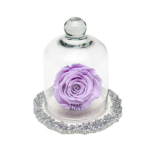 DIAMANTE BELLE SINGLE INFINITY ROSE - LILAC