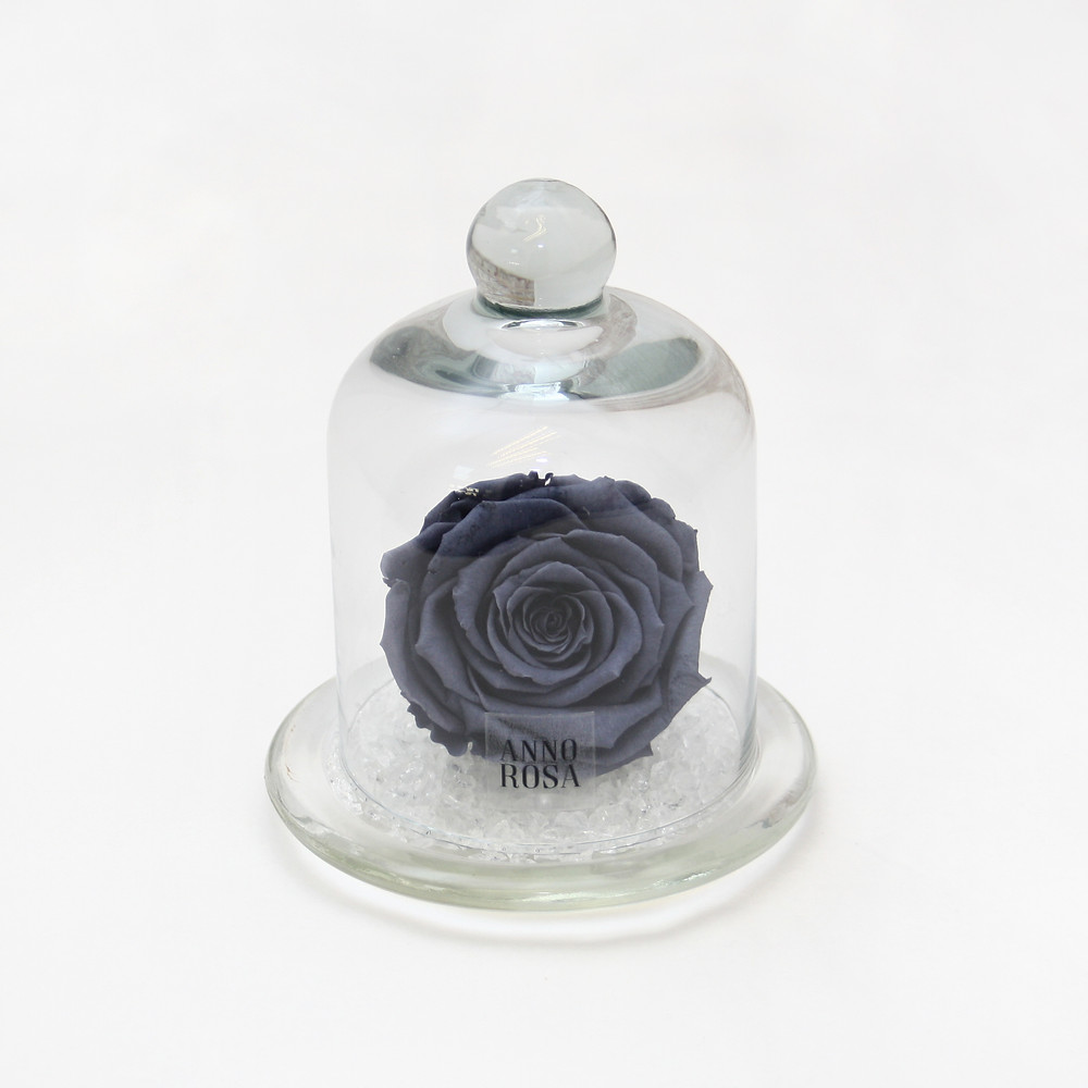 Grey Classic Belle Preserved Rose