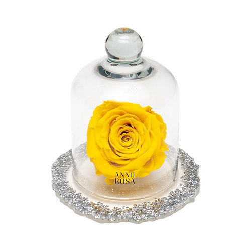 DIAMANTE BELLE SINGLE INFINITY ROSE - YELLOW