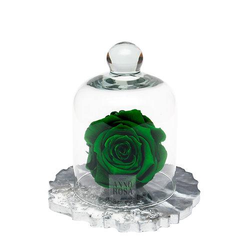RESIN BELLE SINGLE INFINITY ROSE - GREEN