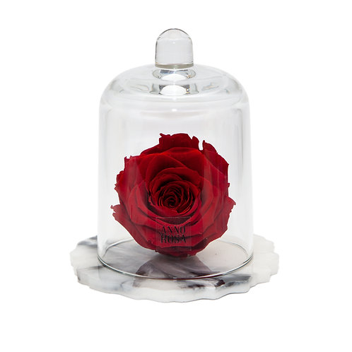 DELUXE RED MARBLE RESIN BELLE SINGLE INFINITY ROSE