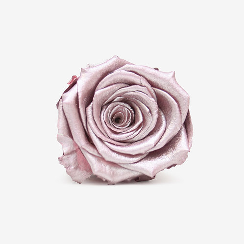 Metallic Pink Preserved Infinity Rose That Lasts A Year