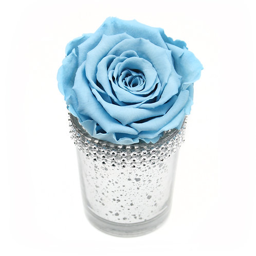 Baby Blue Infinity Rose that lasts a year
