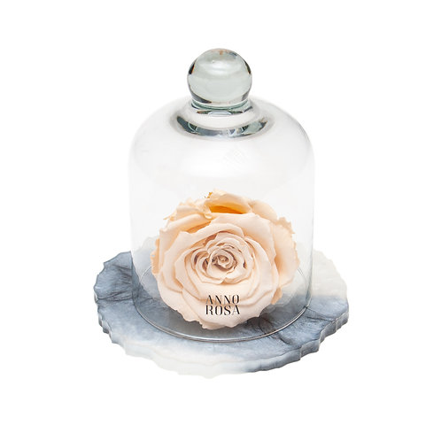MARBLE BELLE SINGLE INFINITY ROSE - CHAMPAGNE