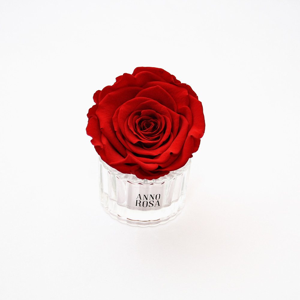 Red Mini Infinity Rose