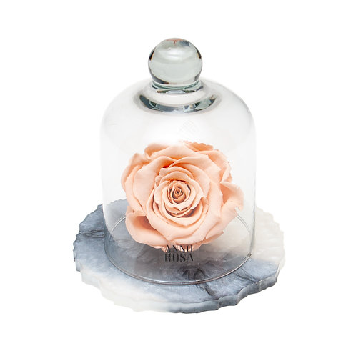 MARBLE BELLE SINGLE INFINITY ROSE - PEACH