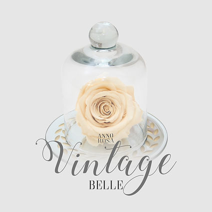 vintage belle category.jpg