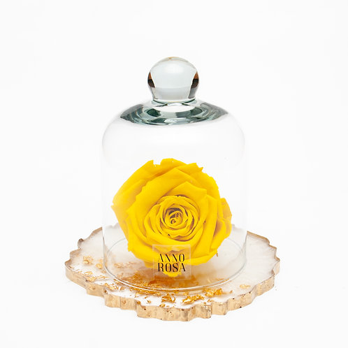 RESIN BELLE SINGLE INFINITY ROSE - YELLOW