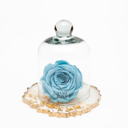 RESIN BELLE SINGLE INFINITY ROSE - BABY BLUE