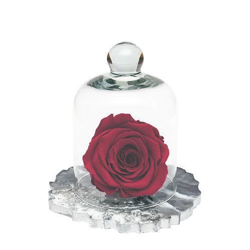 RESIN BELLE SINGLE INFINITY ROSE - WINE
