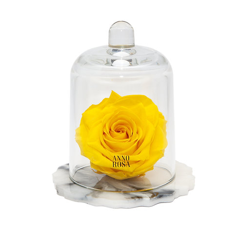 DELUXE YELLOW MARBLE RESIN BELLE SINGLE INFINITY ROSE