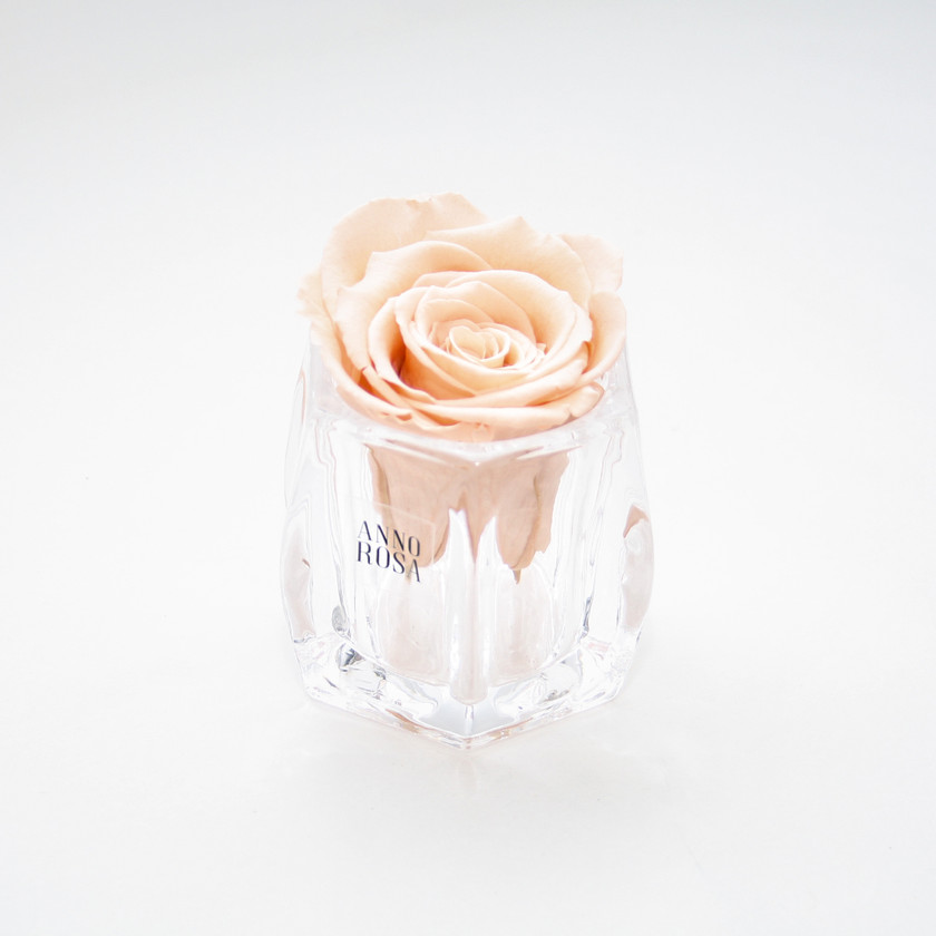 roses, year long roses, forever roses, infinity roses, roses that dont die, roses that last forever, roses, rose decor, roses, bedroom decor, bedroom decor ideas, bedroom decor trends, bedroom trends, trends for home, home trends, home decor ideas, forever roses, infinity roses, home decor, home interior, interior design ideas, ideas for interior, interior design, interior, design