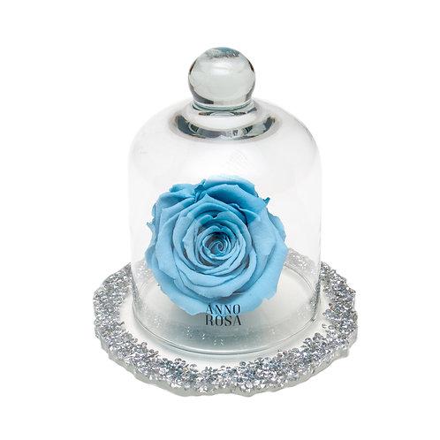 DIAMANTE BELLE SINGLE INFINITY ROSE - BABY BLUE