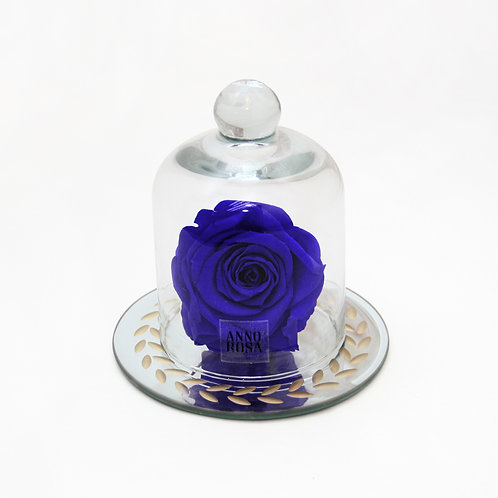 Sapphire Blue Real Preserved Rose that lasts a year