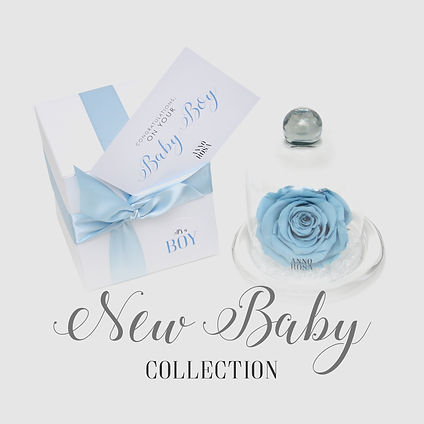 new baby category.jpg