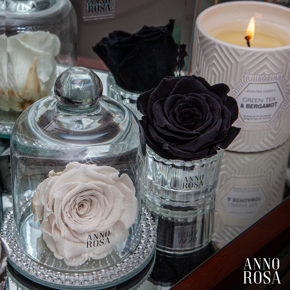 Ivory Belle Eternity Rose & Mini Black Preserved Rose