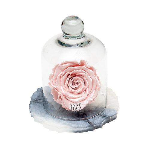 MARBLE BELLE SINGLE INFINITY ROSE - METALLIC PINK