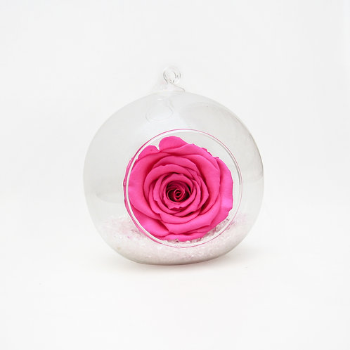 Fuchsia Pink Infinity Rose in Bauble