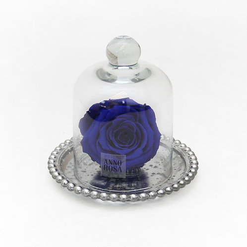 Sapphire Blue Eternity Rose That Lasts A Year