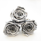 preserved roses, gift ideas, girls gift ideas, metallic roses, metal roses, infinity rose, forever roses, year long roses, roses that dont die, first home, home decor, first home ideas, home decor ideas, bedroom inspo, bedroom decor
