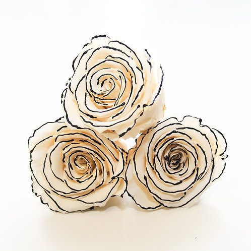 Zebra roses that will last a year