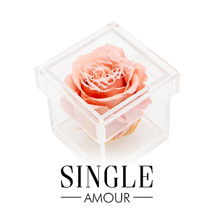 CUBED SINGLE AMOUR BUTTON.jpg