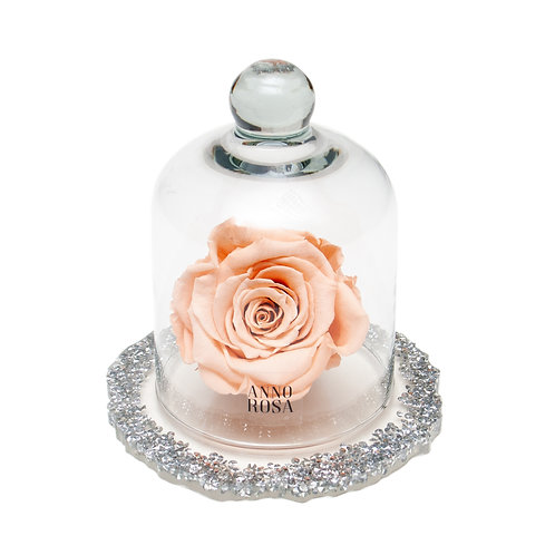 DIAMANTE BELLE SINGLE INFINITY ROSE - PEACH