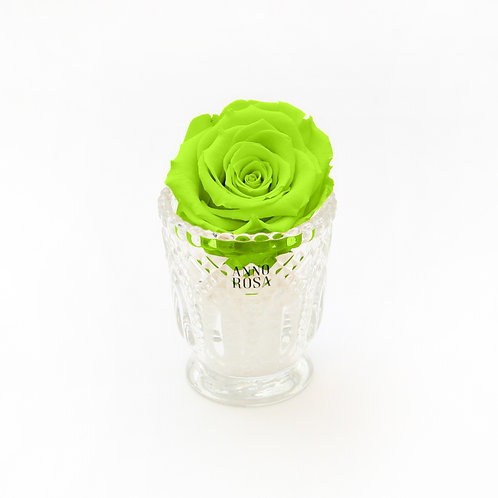 Neon Green Real Rose
