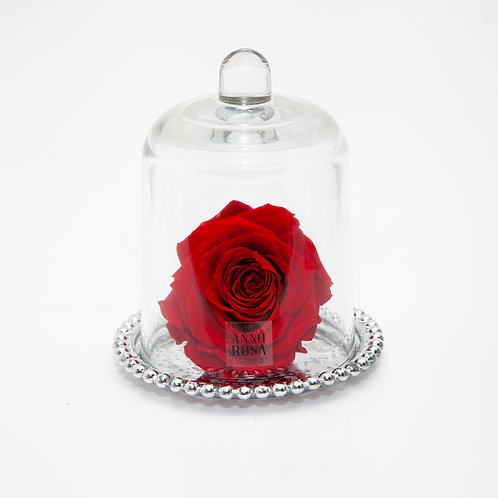 DELUXE RED ANTIQUE BELLE SINGLE INFINITY ROSE