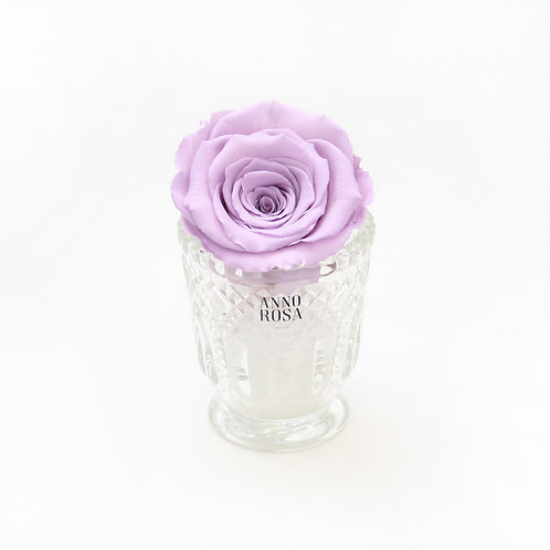 Lilac Eternity Rose That Lasts a Year