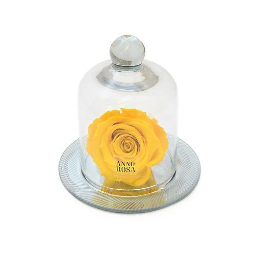 GEOMETRIC BELLE SINGLE INFINITY ROSE - YELLOW