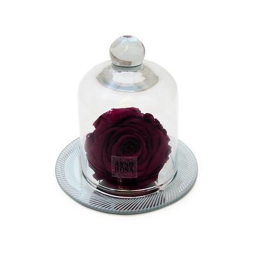 GEOMETRIC BELLE SINGLE INFINITY ROSE - WINE